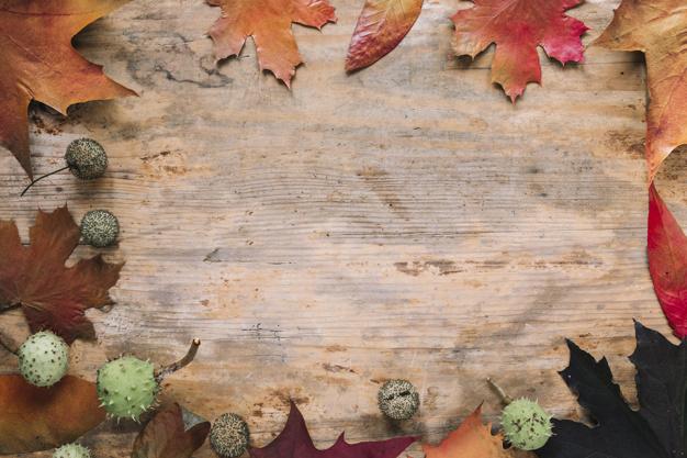 jesieni-tlo-z-liscmi-na-drewnie_23-2147880947